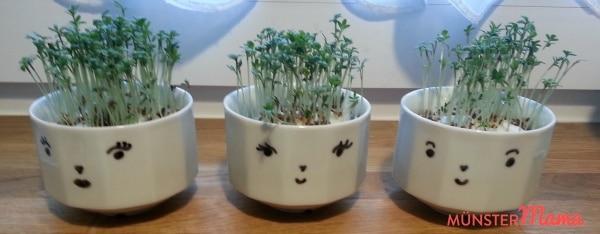 Kressekoeppe2 DIY Kresse Blumentopf Tassen Porzellan Malerei Geschenkidee Kinder Basteln