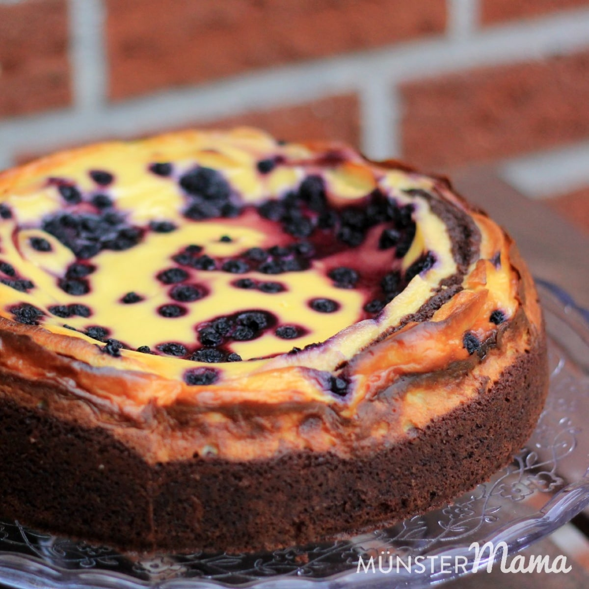 Blueberry_brownie_cheesecake3