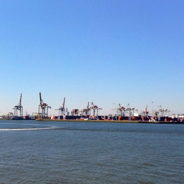 Kräne im Hafen in Rotterdam