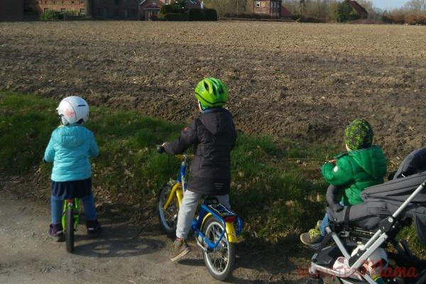 Schulweg-Fahrrad-Verkehrserziehung-Gefahren