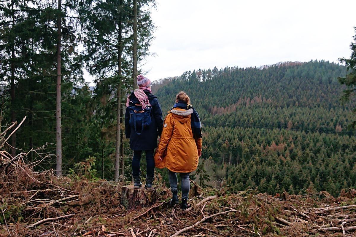 Freunde-Studienzeit-Wanderung-Natur-Bergisches Land-Abitur-Jubiläum