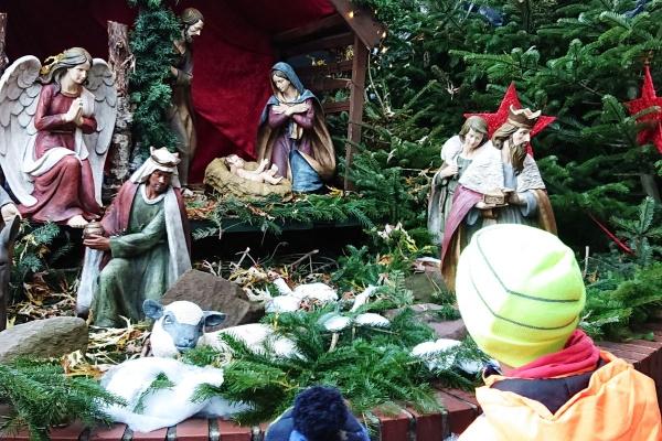 Weihnachtsmarkt Münster-Krippe beim Aegidiimarkt mit Junge