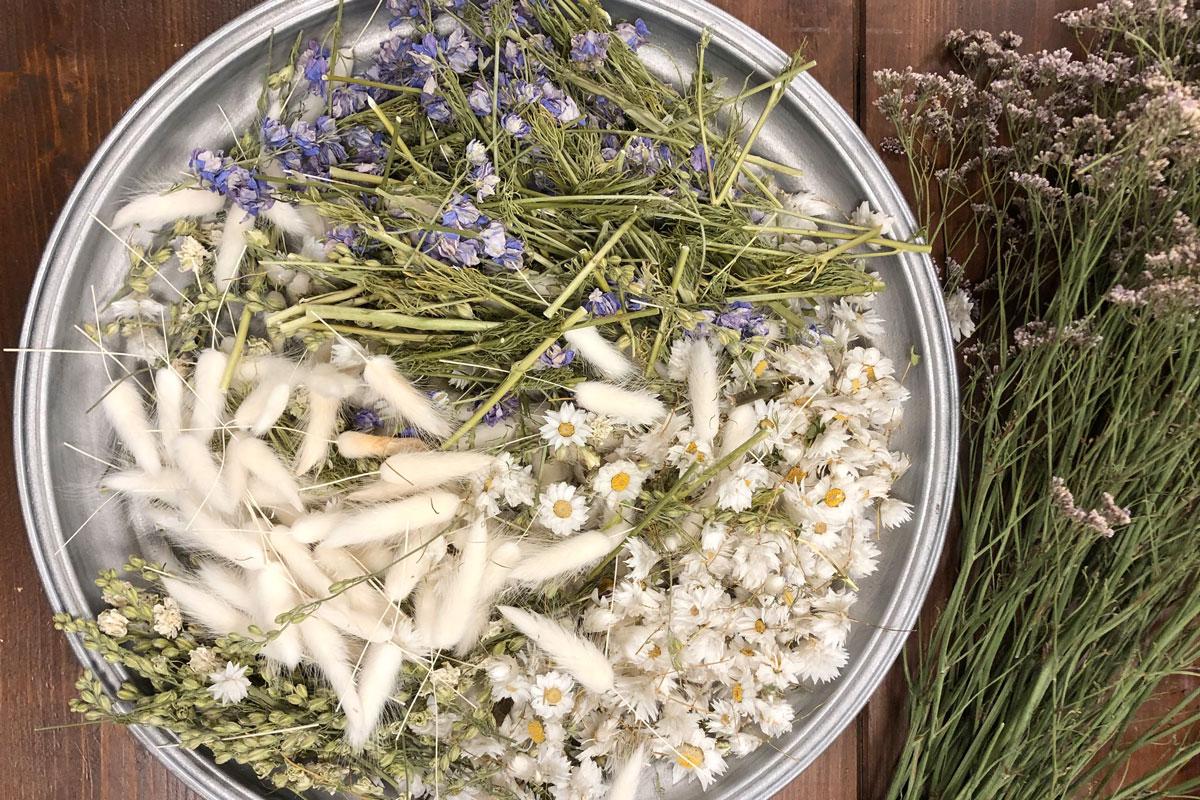 Trockenblumen Vorschnitt Frühlingskranz Trockenblumen