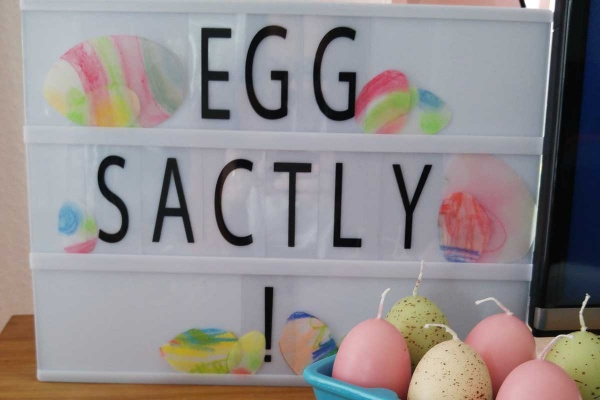 Eggsactly-Wortspiel auf Lichtbox