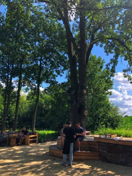 Kinderfreundliches Restaurant in Havixbeck: Das Lauschig: der alte Baumbestand sorgt für noch mehr Gemütlichkeit